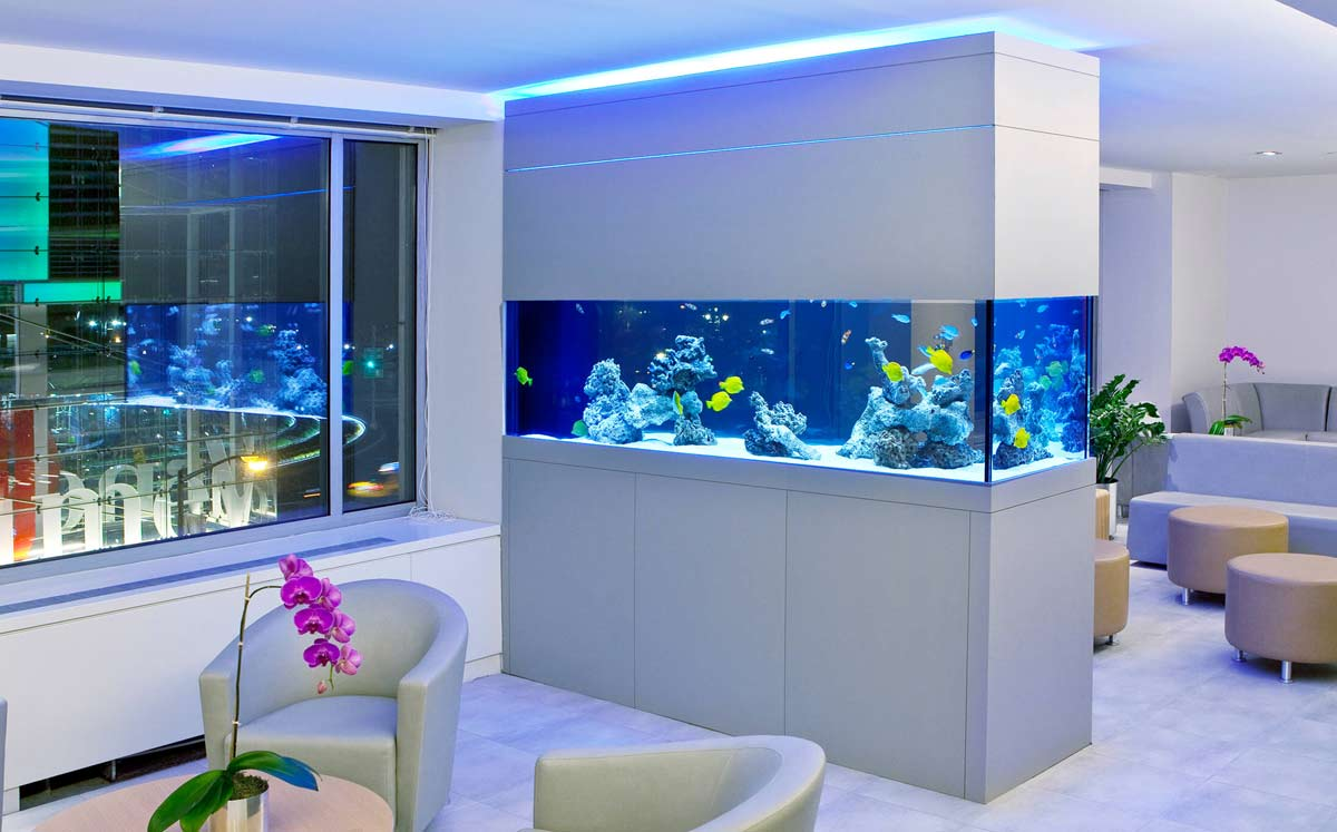 bespoke aquariums
